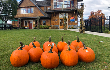 Twelve orange pumpkins sitting on green grass in front of the Lake Hopatcong Golf Course Building